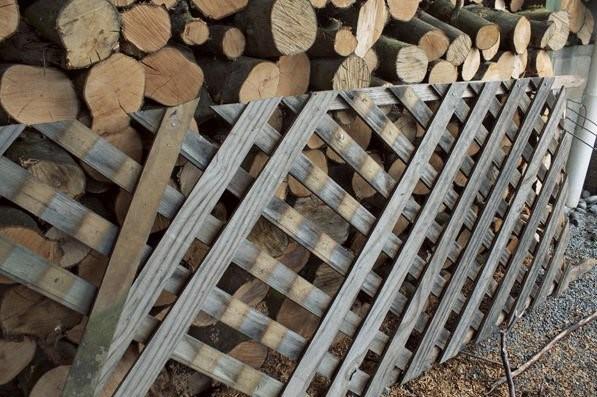 Old lattice fencing