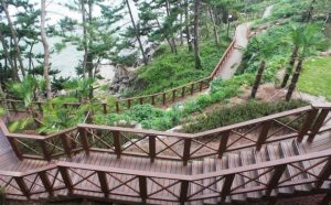 garden paths. This is a composite decking pathway in Sol Beach Resort, ,Korea.